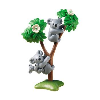 Семья коал