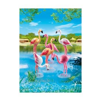Стая фламинго