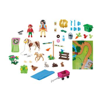 Игровые карты Прогулки пони и Парк Феи
