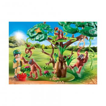 Среда обитания орангутанов