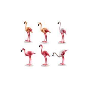 Семья фламинго